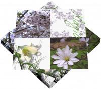 Frühlingsservietten