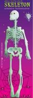Skelett nachtleuchtend 30cm