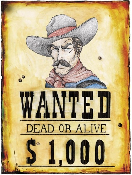 """Poster """"Wanted"""""""