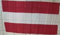 Fahne Oesterreich