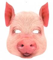 Fotomaske Karton Schwein