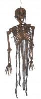 Verbranntes Zombie Skelett