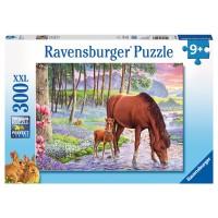 RAVENSBURGER Puzzle Wilde Schönheit
