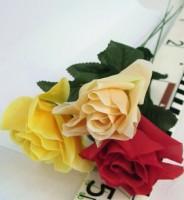 Rosen lang