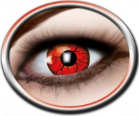 Kontaktlinsen Metatron, 3 Monate
