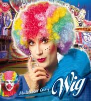 Perücke Clown multicolor