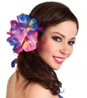 Haarblume Hibiscus an Klammer