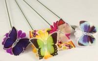 Schmetterlingsblume mit Solarzelle