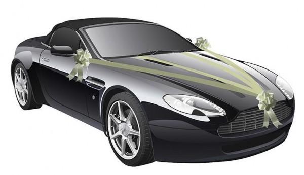 Dekoset Hochzeitsschleife fürs Auto, elfenbein 5 Teilig 3 Schleifen 2 Rollen Band 20m