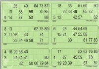 6er Lottoblätter grün