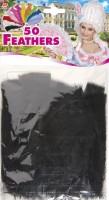 Schwarze Federn