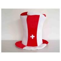 HAUSER Zylinder Schweiz