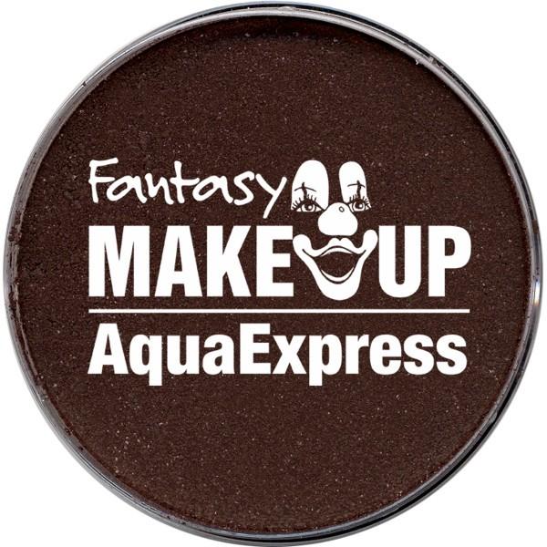 Aqua Express Schminke braun 15g