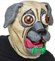 Maske Hund Bulldogge Latex mit Riesenaugen, Ganzkopf