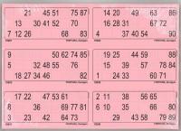 6er Lottoblätter pink