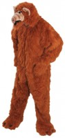 Kostüm Alphonso 180cm