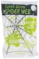 Leuchtendes Spinnennetz